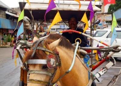 "Horsecart (""Bendi"")"